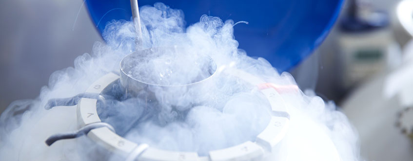 Egg Freezing: New Study Finds Disadvantages