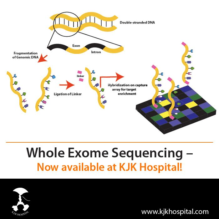 Whole_Exome_Sequencing
