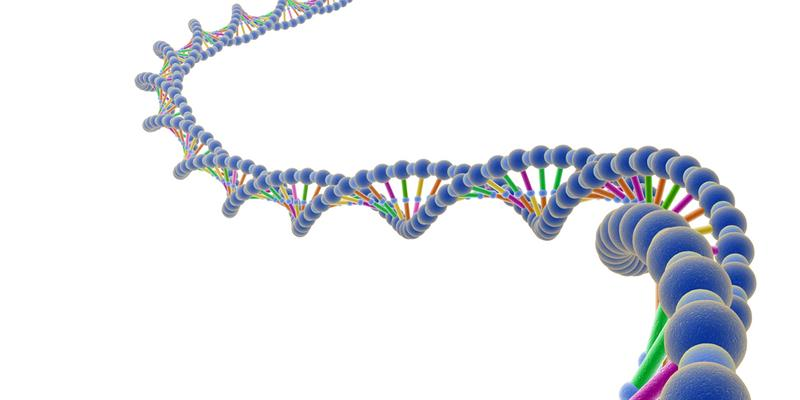 Whole_Genome_Sequencing